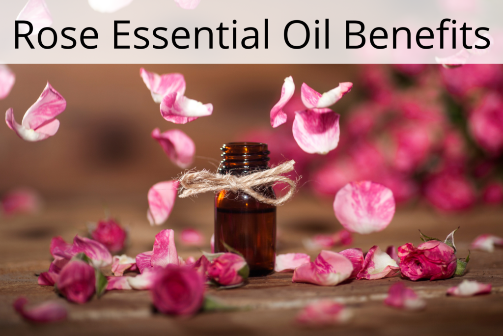 Rose Essential Oil Benefits