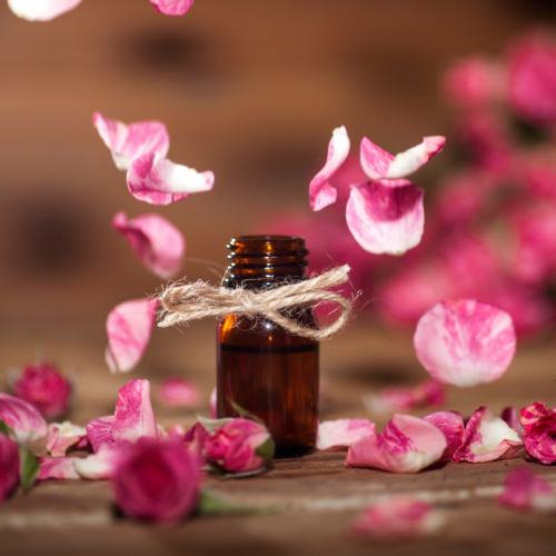 7 Rose Essential Oil Benefits for Beauty and Health